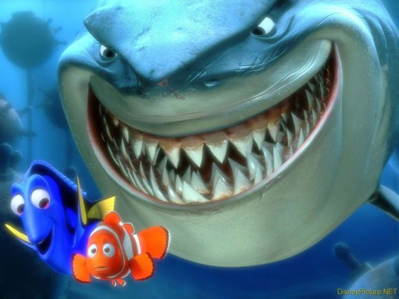 Did you ever get that feeling like there was a shark behind you?